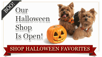 Halloween Dog Supplies