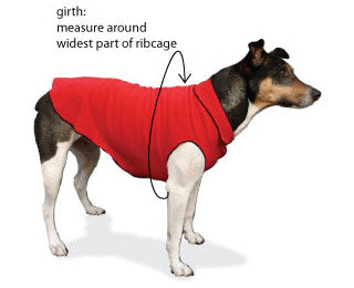Girth Measurement Rain Paw Dog Coat