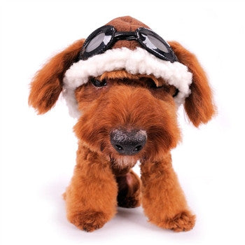 Aviator Hat for Dogs