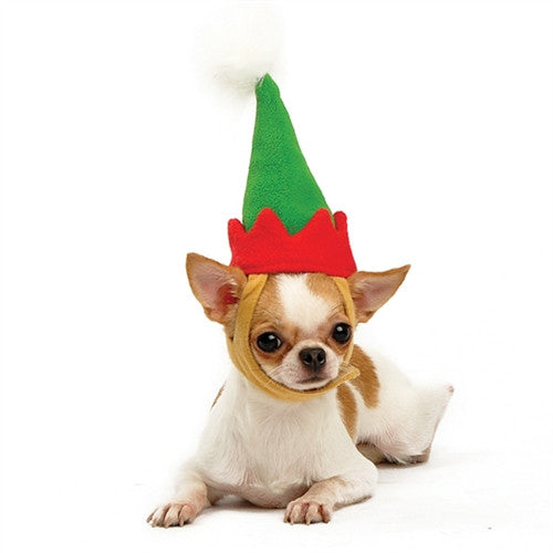 Elf Hat for Dogs