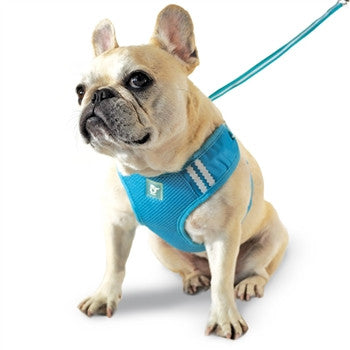 EasyGO Soft Step-In Dog Harness - Basic