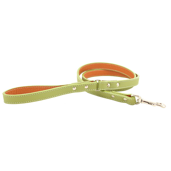 Italian Leather Dog Leash - Green