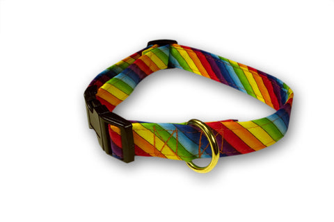 Elmo's Closet Diagonal Pride Dog Collar