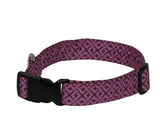 Elmo's Closet Zig Zag Dog Collar