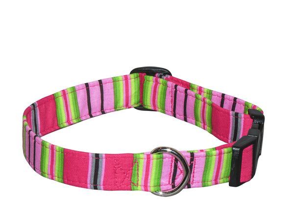 Elmo's Closet Fuschia Stripe Dog Collar