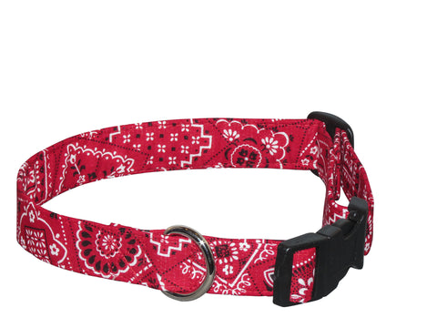 Elmo's Closet Rodeo Dog Collar