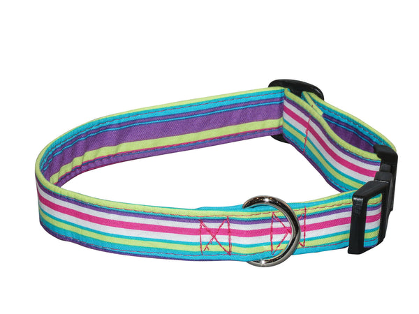 Elmo's Closet Purple, Teal & Green Stripe Dog Collar