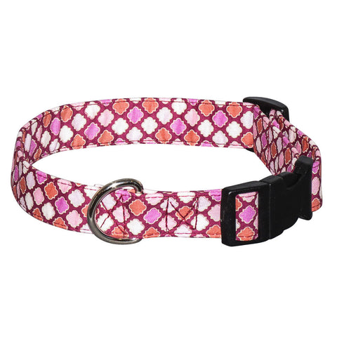 Elmo's Closet Pretty Trefoils Dog Collar