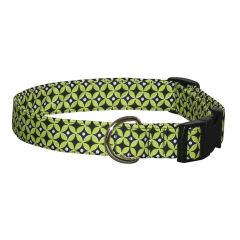 Elmo's Closet Citrus Geometric Dog Collar