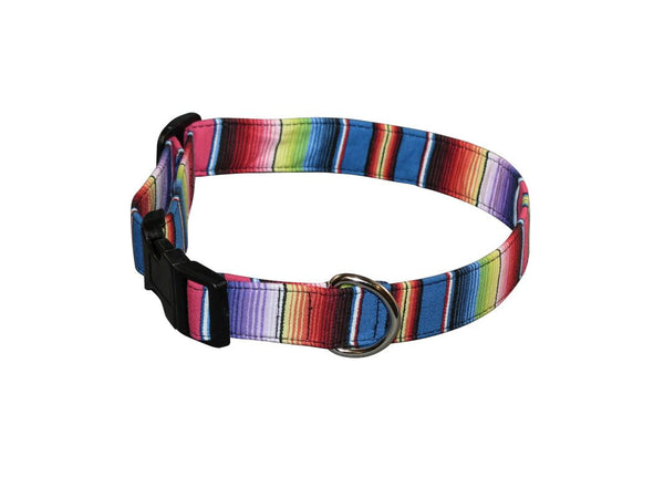 Elmo's Closet Fiesta Dog Collar