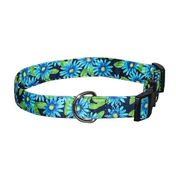 Elmo's Closet Blue Asters Dog Collar