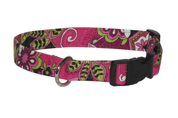 Elmo's Closet Tabitha Dog Collar