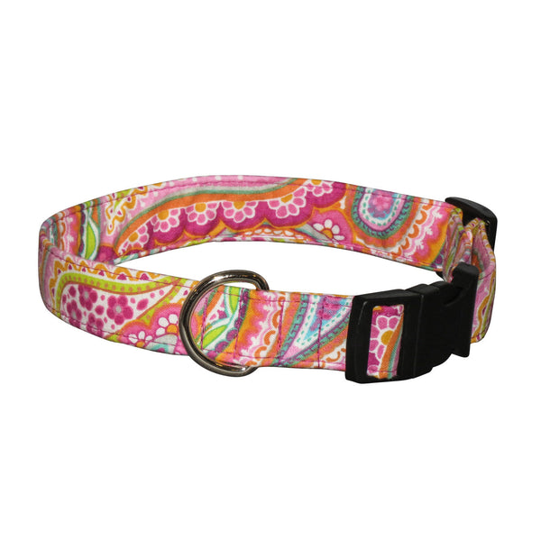 Elmo's Closet Jessica Dog Collar