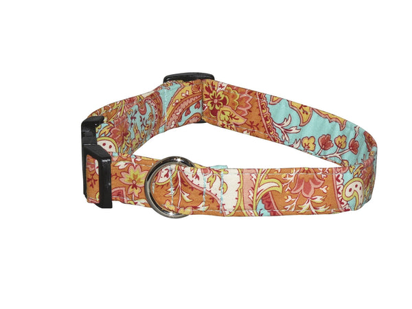 Elmo's Closet Ana Dog Collar