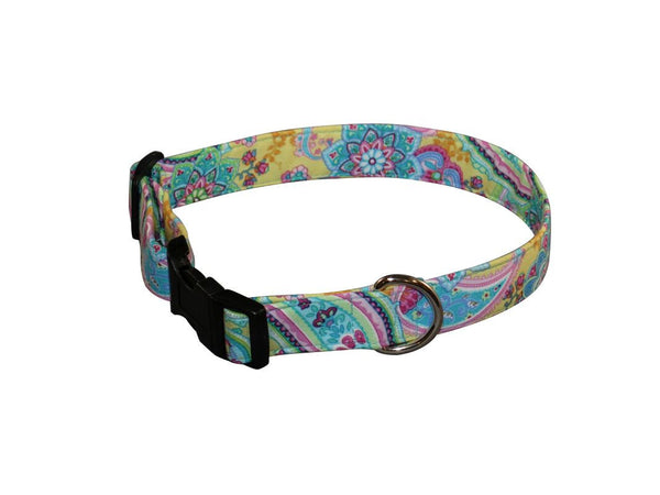 Elmo's Closet Melissa Dog Collar