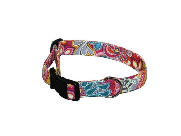 Elmo's Closet Gypsy Dog Collar