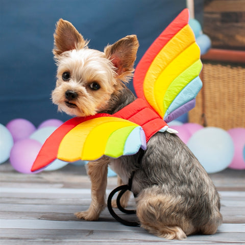 Rainbow Wings Dog Halloween Costume
