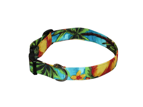 Elmo's Closet Tropical Paradise Dog Collar