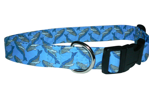 Elmo's Closet Whales Dog Collar