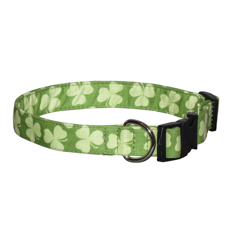 Elmo's Closet Shamrock Stripe Dog Collar