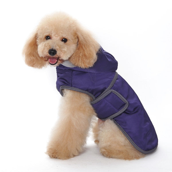 Classic Trench Coat For Dogs - Purple