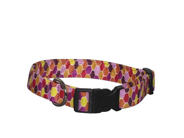Elmo's Closet Ogee Dog Collar