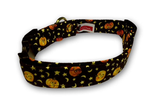 Elmo's Closet Lil Pumpkin Dog Collar
