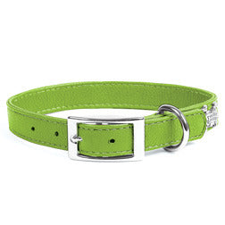 Rockin' Doggie Leather Dog Collar - Green