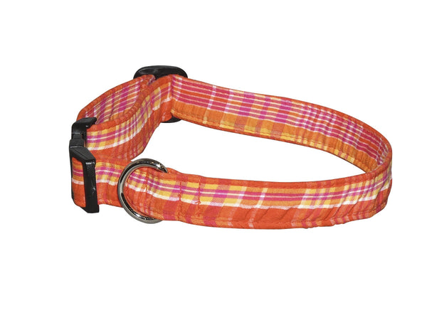 Elmo's Closet Citrus Dog Collar