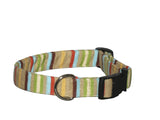 Elmo's Closet Multi Stripe Dog Collar