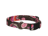 Elmo's Closet Bold Blossoms Dog Collar