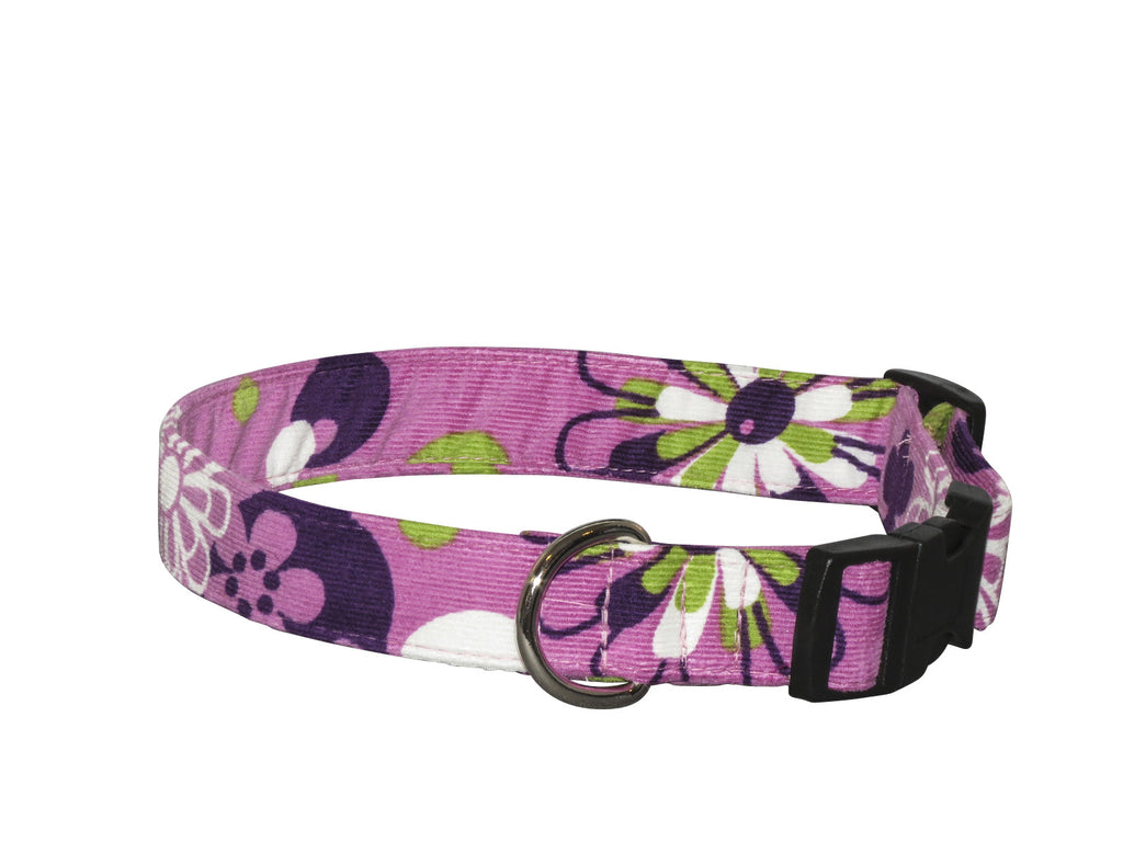 Elmou0027s Closet Plum Petals Dog Collar