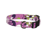 Elmo's Closet Plum Petals Dog Collar