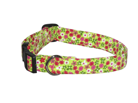 Elmo's Closet Lime Floral Dog Collar