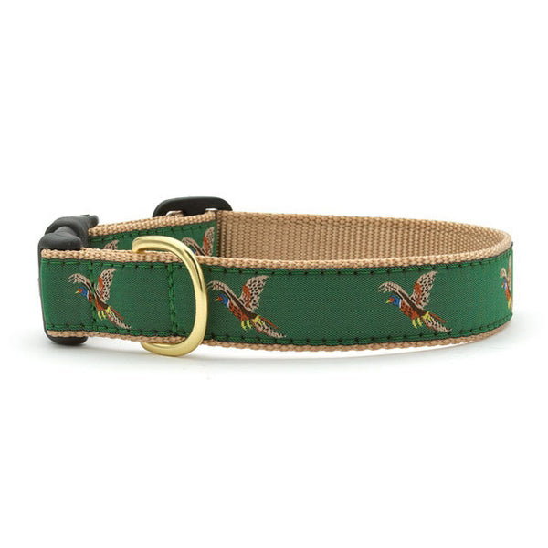 Up Country Pheasant Dog Collar