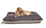 Big Shrimpy Bogo Dog Bed - Plum Faux Suede