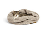 cat in fleece bed