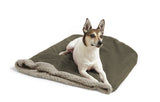 Small dog on top of Big Shrimpy Den Dog & Cat Bed - Stone