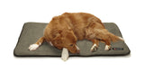 Dog Sleeping On Big Shrimpy Landing Pad Dog Mat - Stone