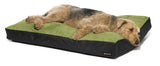 dog on big shrimpy original bed - green