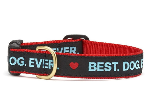 Up Country Best Dog Ever Dog Collar