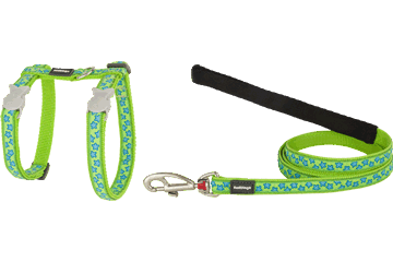 Red Dingo Designer Cat Harness and Lead Combo - Star (Turquoise/Lime)
