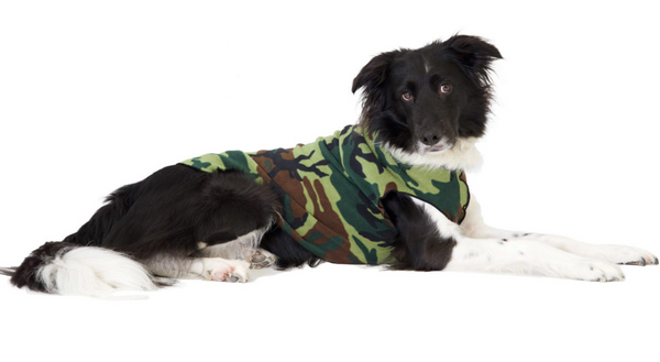 Gold Paw Stretch Fleece Dog Coat - Camouflage