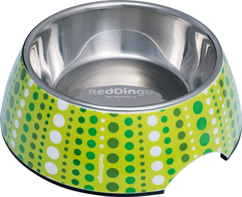 Red Dingo Premium 2-in-1 Dog Bowl - Lime Green Lotzadotz
