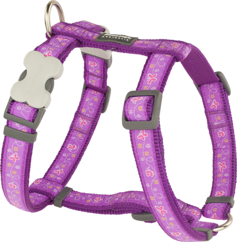 Red Dingo Designer Dog Harness - Butterfly (Purple)