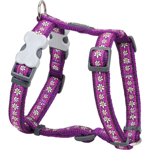 Red Dingo Designer Dog Harness - Daisy Chain (Purple)