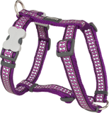 Red Dingo Designer Dog Harness - Reflective Bones (Purple)