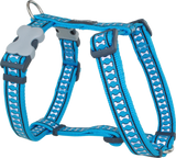 Red Dingo Designer Dog Harness - Reflective Bones (Turquoise)