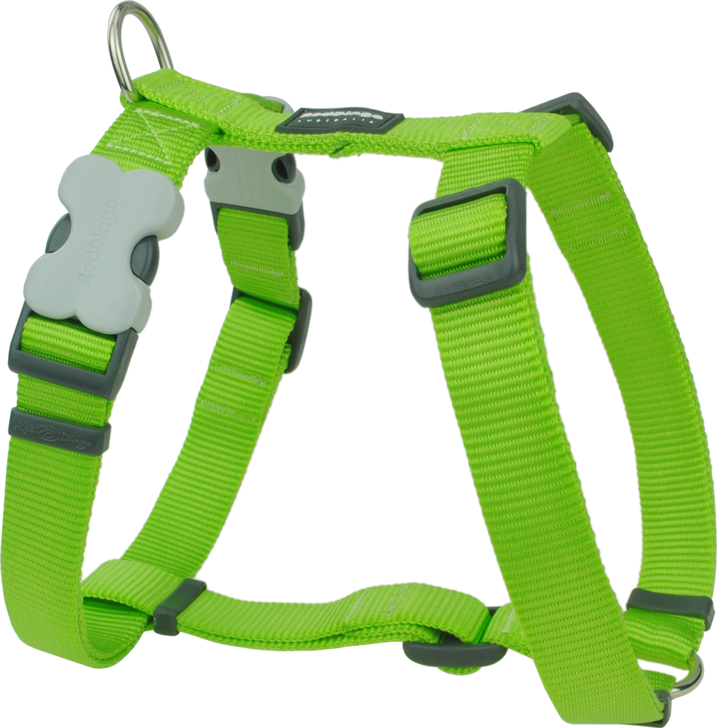 Red Dingo Clic Dog Harness - Lime Green | PupLife Dog Supplies