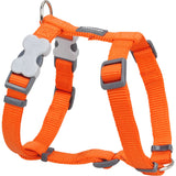 Red Dingo Classic Dog Harness - Orange